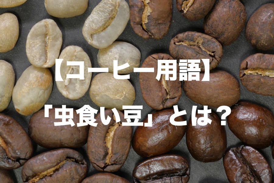 虫食い豆とは